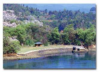 会場から見える桜の名所「能島」