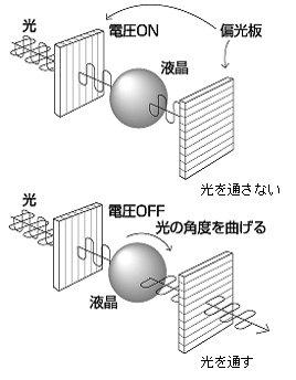 偏光板は一定方向の光の波だけを通す。液晶は電圧がONの時は光の波をそのままの方向で通し、OFFの時は光の波の角度を曲げて通す。
