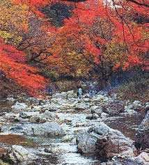 紅葉の美しい「小田深山」