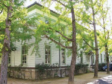 画像:窓の外には銀杏並木