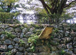 画像:高知城見取り図