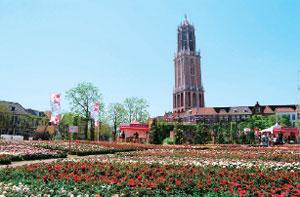 花の王国「ローズカーペット」