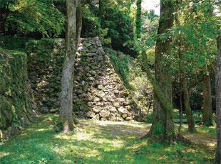 画像:木立の中にひっそり佇む石垣