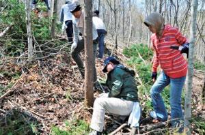 森づくりのボランティア