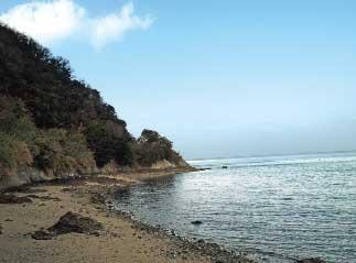 画像:島の風景