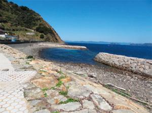 画像:日崎海水浴場