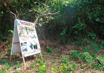 画像:ニホンカワウソが保護された場所