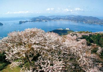 画像:積善山山頂からの眺め