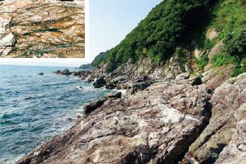 画像:シュードタキライト(黒い筋状の部分)と変成岩類