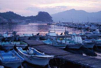 画像:津和地の港