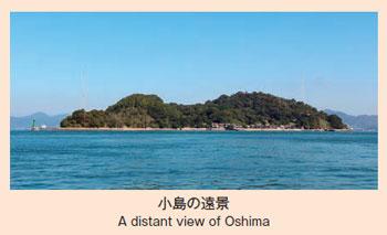 小島の遠景