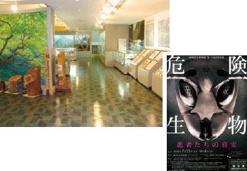 館内の常設展示、特別展の紹介パンフレット